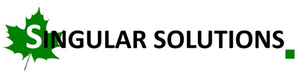 Singular Solutions inc.